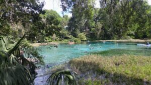 Rainbow Springs State Park Adventure Our Redonkulous Life